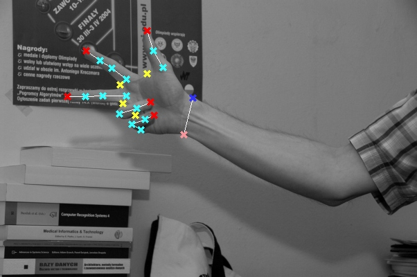 Analysis of the mainstream optical gesture recognition
